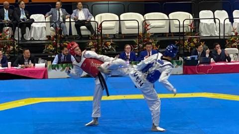 Taekwondo a Japón